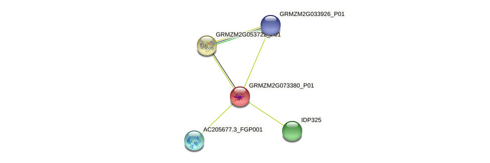 GRMZM2G073380_P01 protein (Zea mays) - STRING interaction network