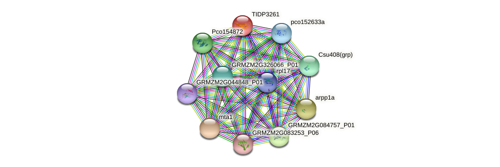 TIDP3261 protein (Zea mays) - STRING interaction network