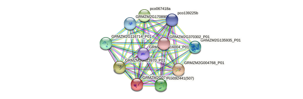 GRMZM2G074241_P01 protein (Zea mays) - STRING interaction network