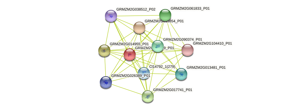 100193408 protein (Zea mays) - STRING interaction network