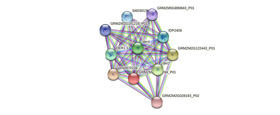 GRMZM2G075784_P01 protein (Zea mays) - STRING interaction network