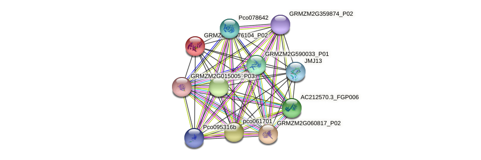 phm2343 protein (Zea mays) - STRING interaction network