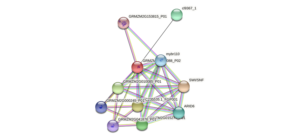 Zm.15790 protein (Zea mays) - STRING interaction network