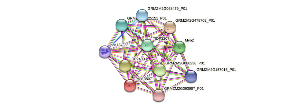 Zm.4433 protein (Zea mays) - STRING interaction network