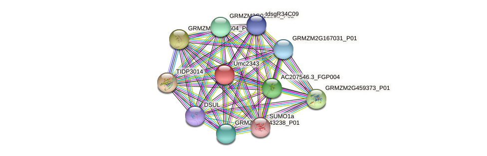 Zm.87138 protein (Zea mays) - STRING interaction network