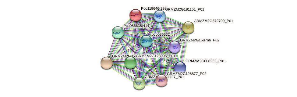 GRMZM2G079777_P01 protein (Zea mays) - STRING interaction network