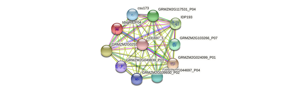 GRMZM2G079965_P01 protein (Zea mays) - STRING interaction network
