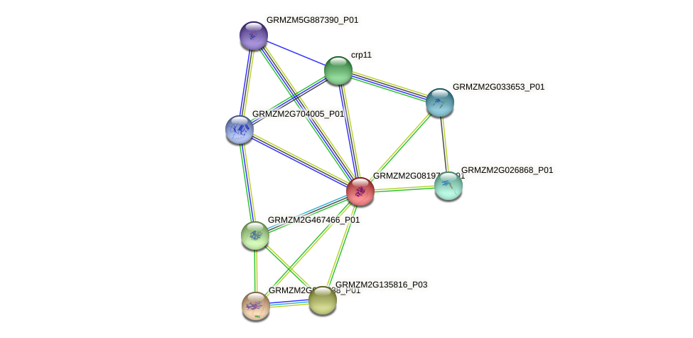 Zm.21380 protein (Zea mays) - STRING interaction network