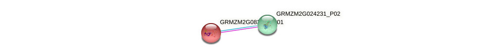 GRMZM2G082112_P01 protein (Zea mays) - STRING interaction network