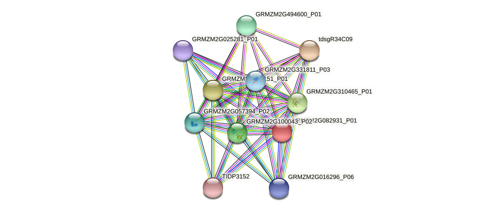 GRMZM2G082931_P01 protein (Zea mays) - STRING interaction network