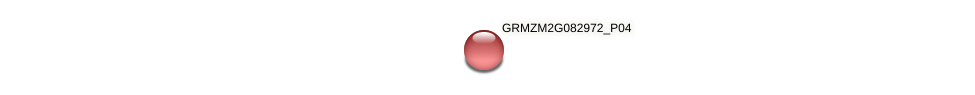 GRMZM2G082972_P01 protein (Zea mays) - STRING interaction network