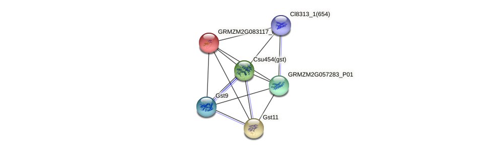 GRMZM2G083117_P01 protein (Zea mays) - STRING interaction network