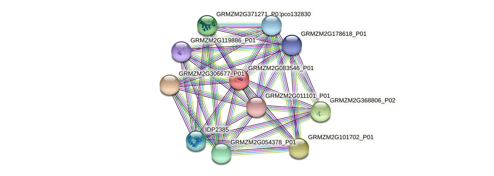 Zm.4758 protein (Zea mays) - STRING interaction network