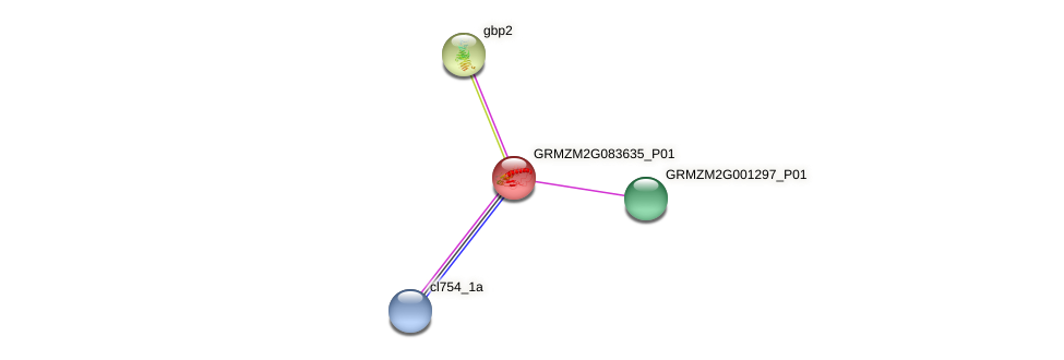 GRMZM2G083635_P01 protein (Zea mays) - STRING interaction network