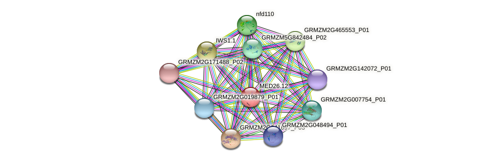 MED26.12 protein (Zea mays) - STRING interaction network
