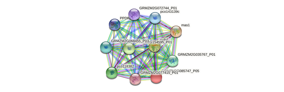 GRMZM2G085747_P05 protein (Zea mays) - STRING interaction network