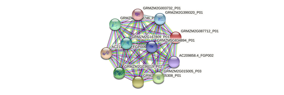 GRMZM2G087712_P01 protein (Zea mays) - STRING interaction network