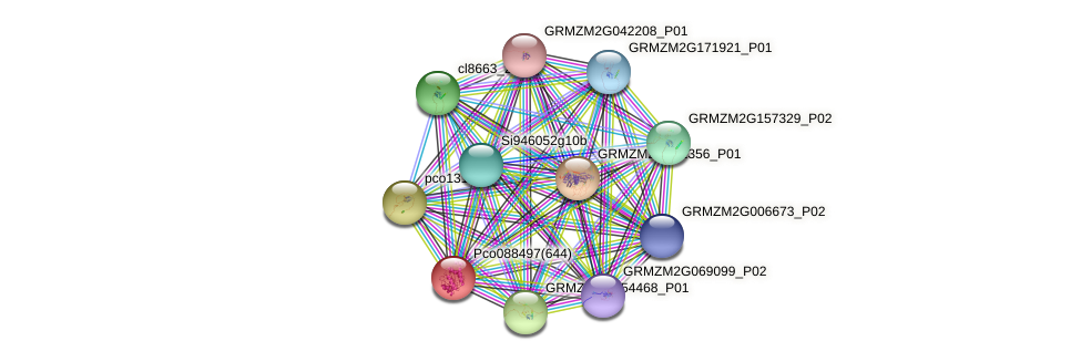 GRMZM2G088218_P03 protein (Zea mays) - STRING interaction network