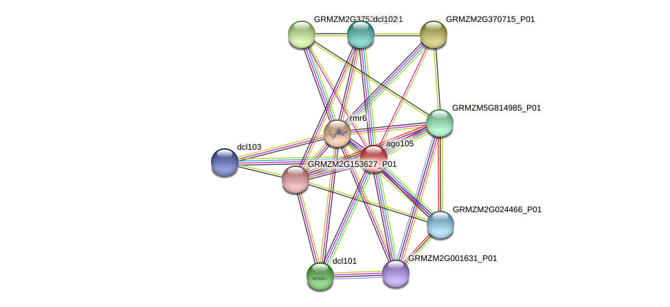 GRMZM2G089743_P01 protein (Zea mays) - STRING interaction network