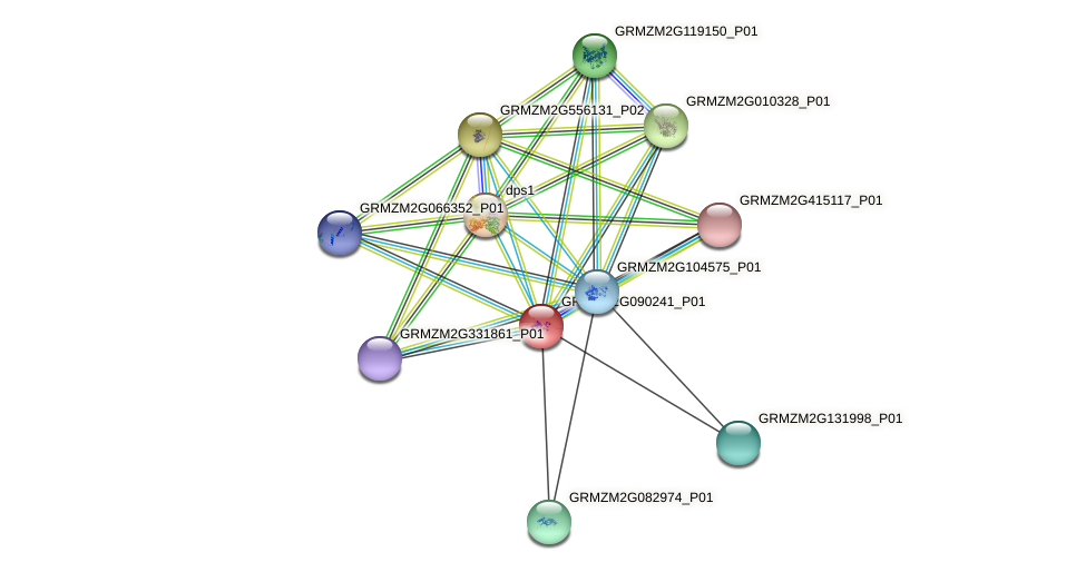 GRMZM2G090241_P01 protein (Zea mays) - STRING interaction network