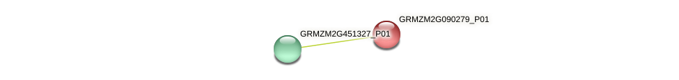 GRMZM2G090279_P01 protein (Zea mays) - STRING interaction network