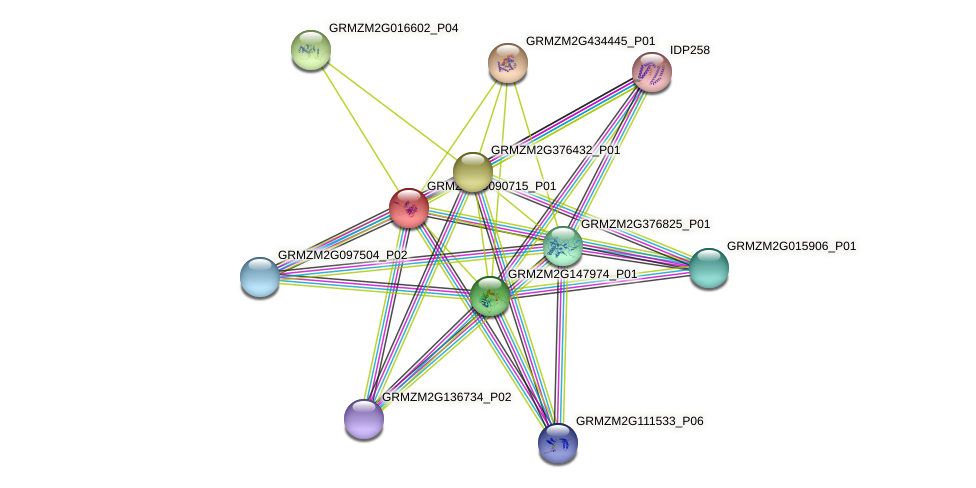 GRMZM2G090715_P01 protein (Zea mays) - STRING interaction network