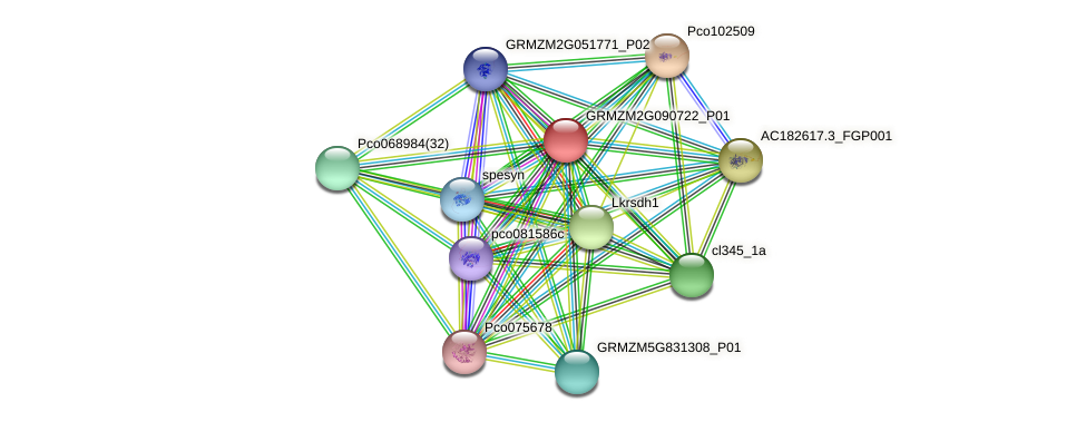 GRMZM2G090722_P01 protein (Zea mays) - STRING interaction network