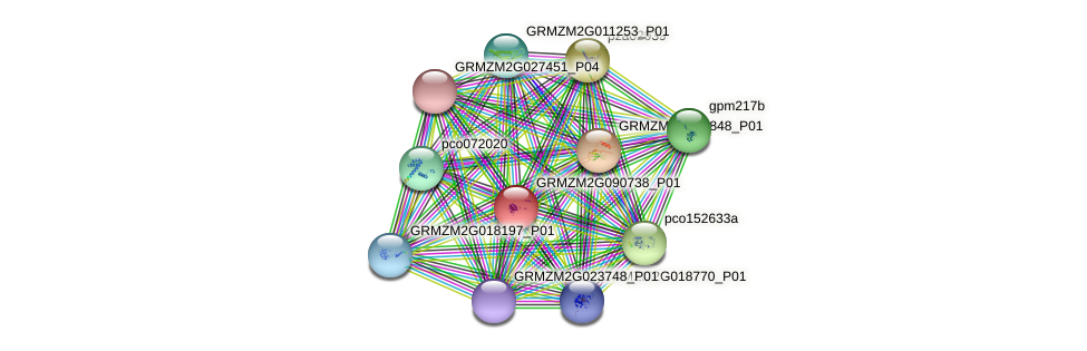 GRMZM2G090738_P01 protein (Zea mays) - STRING interaction network