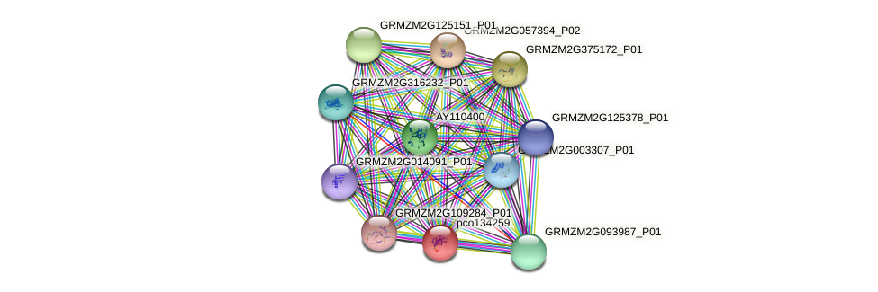 pco134259 protein (Zea mays) - STRING interaction network