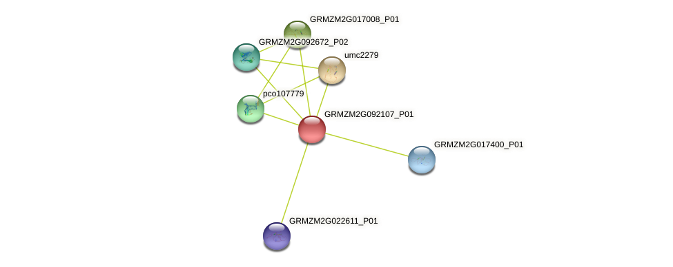 GRMZM2G092107_P01 protein (Zea mays) - STRING interaction network
