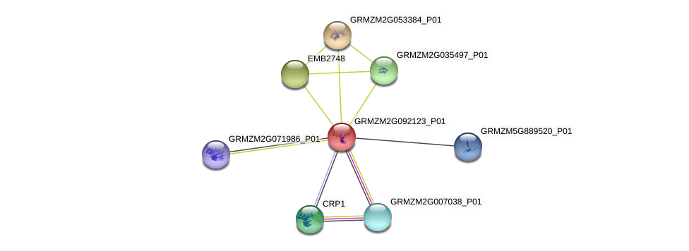 Zm.27785 protein (Zea mays) - STRING interaction network