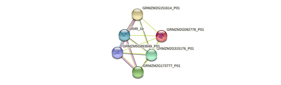 GRMZM2G092778_P01 protein (Zea mays) - STRING interaction network