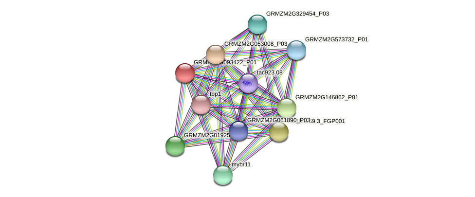 GRMZM2G093422_P01 protein (Zea mays) - STRING interaction network