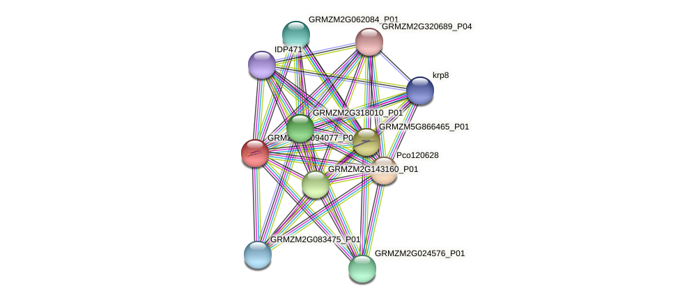 GRMZM2G094077_P01 protein (Zea mays) - STRING interaction network