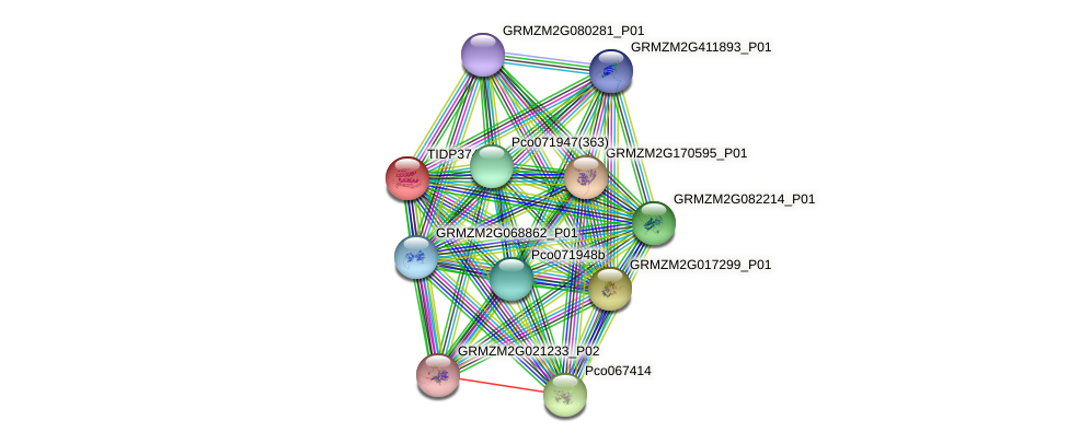 TIDP3748 protein (Zea mays) - STRING interaction network