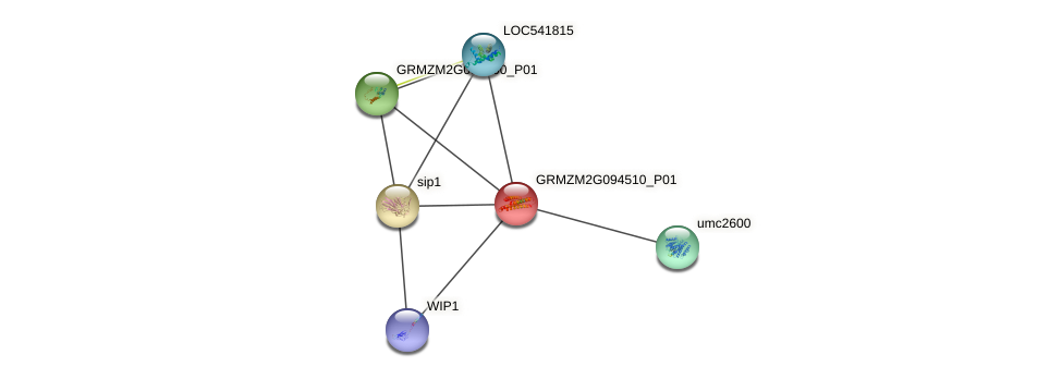 GRMZM2G094510_P01 protein (Zea mays) - STRING interaction network