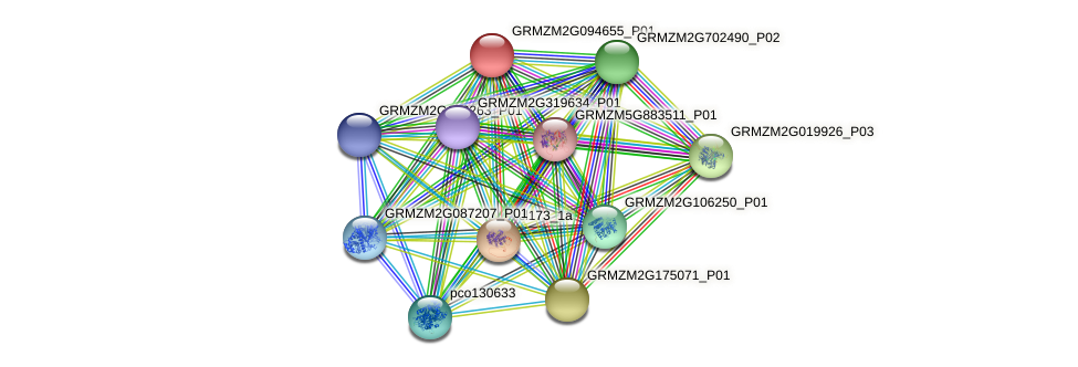 GRMZM2G094655_P01 protein (Zea mays) - STRING interaction network