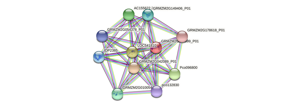 GRMZM2G094699_P01 protein (Zea mays) - STRING interaction network