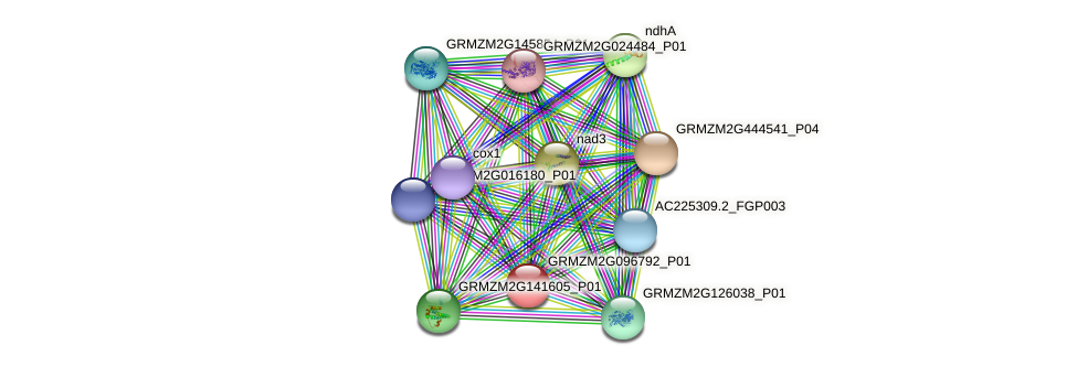 GRMZM2G096792_P01 protein (Zea mays) - STRING interaction network