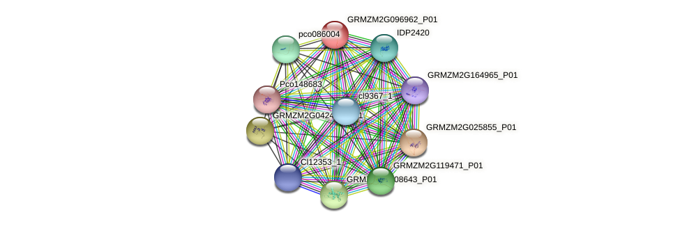 GRMZM2G096962_P01 protein (Zea mays) - STRING interaction network