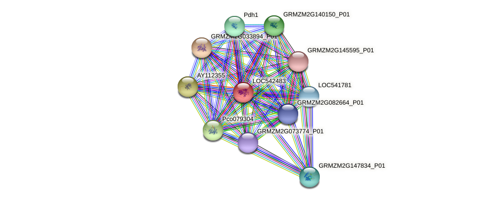 LOC542483 protein (Zea mays) - STRING interaction network