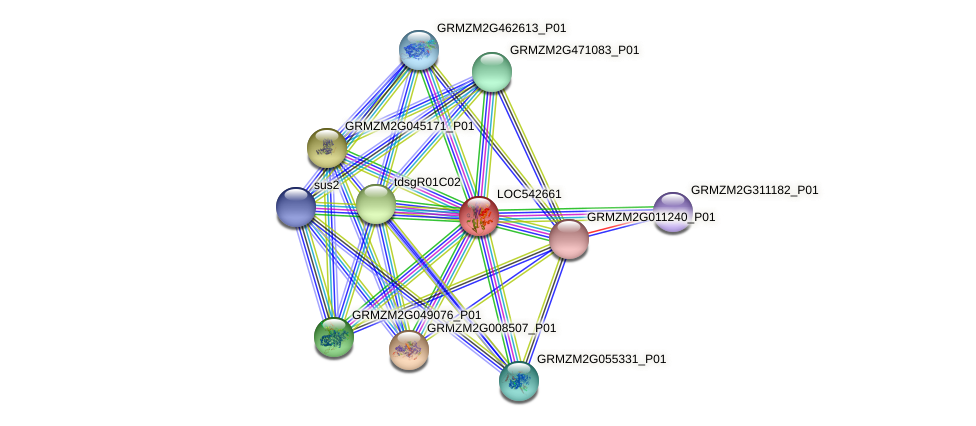 LOC542661 protein (Zea mays) - STRING interaction network