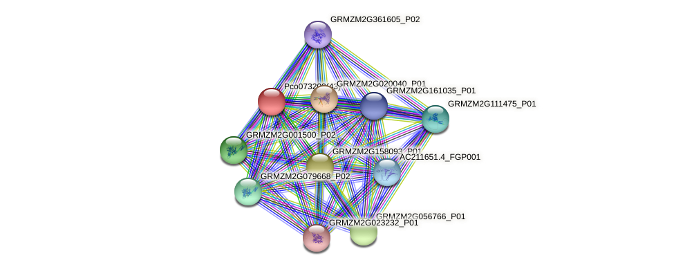 GRMZM2G098058_P01 protein (Zea mays) - STRING interaction network
