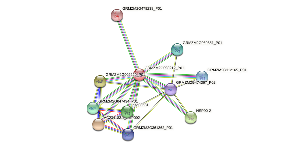 GRMZM2G098212_P01 protein (Zea mays) - STRING interaction network