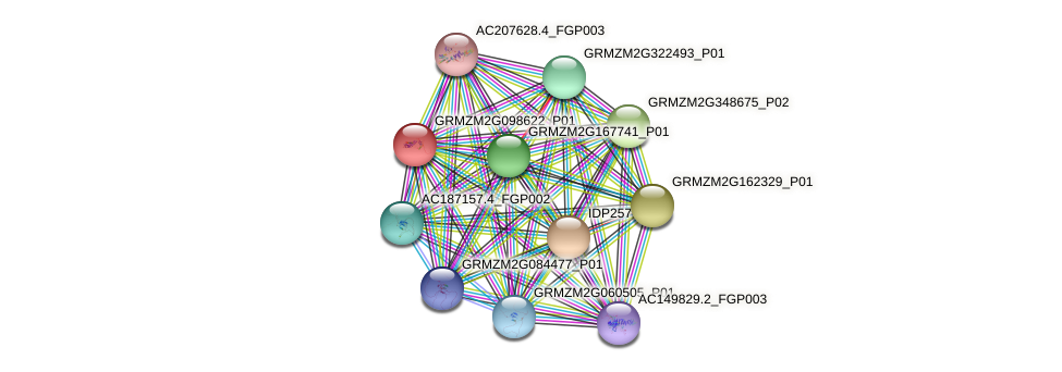 GRMZM2G098622_P01 protein (Zea mays) - STRING interaction network