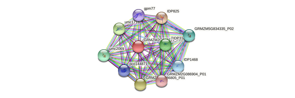 103638072 protein (Zea mays) - STRING interaction network