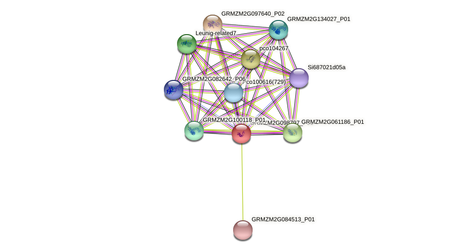 GRMZM2G098797_P01 protein (Zea mays) - STRING interaction network