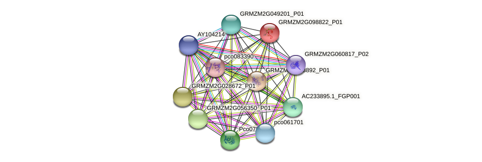 GRMZM2G098822_P01 protein (Zea mays) - STRING interaction network