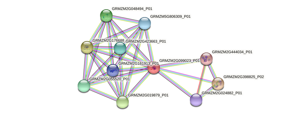 Zm.88027 protein (Zea mays) - STRING interaction network