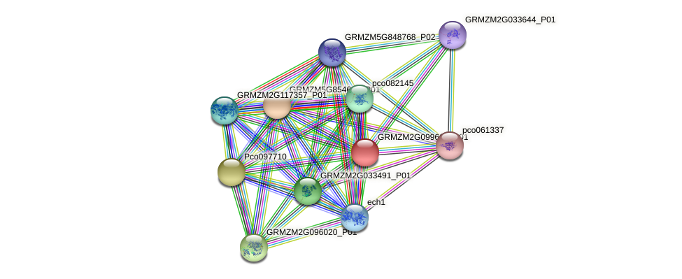 Zm.9218 protein (Zea mays) - STRING interaction network